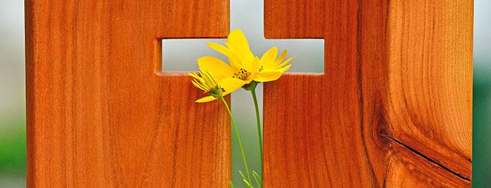 Im Kreuz ist Auferstehung © congerdesign / cc0 – gemeinfrei / Quelle: pixabay.com